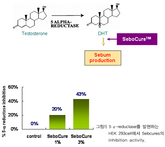 5a-reductase inhibitor